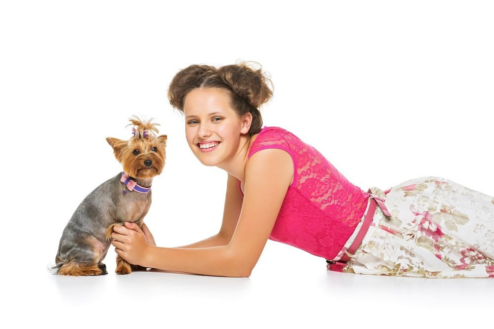 Are Yorkies A One Person Dog