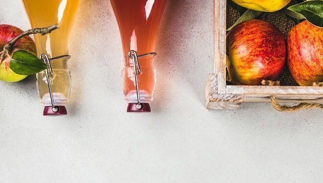 Is Apple Cider Vinegar Good For Dogs?