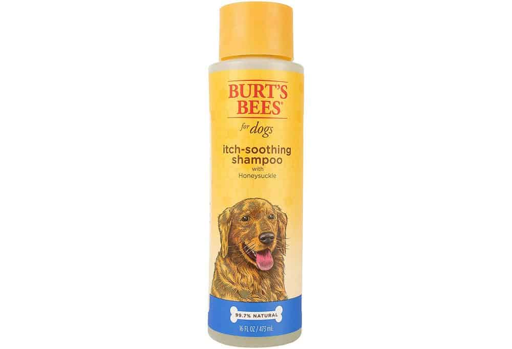 Burts Bees Itch Soothing Shampoo